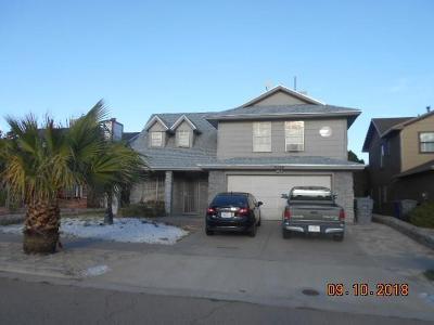 Vista Hills Single Family Home For Sale: 11720 Teachers Drive