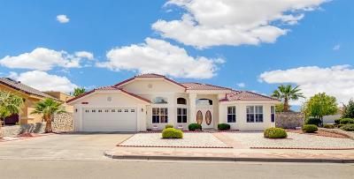 El Paso Single Family Home For Sale: 1321 Rancho Grande Drive