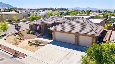 El Paso Single Family Home For Sale: 6700 Capitan Ridge Drive
