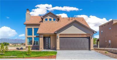 El Paso Single Family Home For Sale: 6236 Kings River Lane