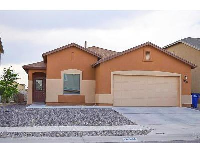 Single Family Home For Sale: 14641 Igor Kaleri Avenue