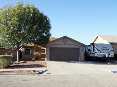 Horizon City Single Family Home For Sale: 14253 Desert Ash Drive