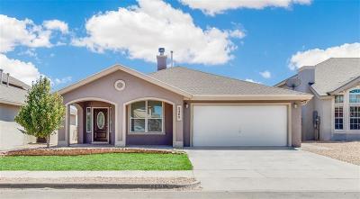 Single Family Home For Sale: 5460 Santiago Roque Drive