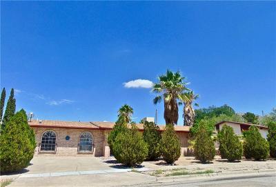 El Paso Single Family Home For Sale: 6829 Granero Drive