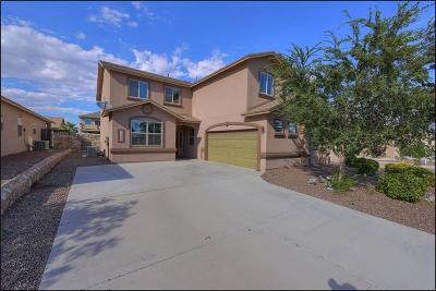 Single Family Home For Sale: 11037 Coyote Ranch Lane