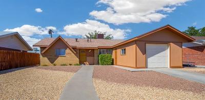 El Paso Single Family Home For Sale: 5857 Dolphin Drive