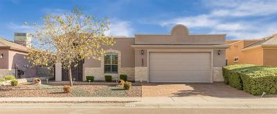 El Paso Single Family Home For Sale: 14024 Rainbow Point Drive