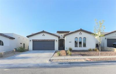 Horizon City Single Family Home For Sale: 12267 Houghton Spgs