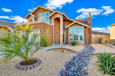 Single Family Home For Sale: 5021 Silver Cholla Drive