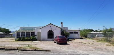 El Paso Single Family Home For Sale: 165 Glenwood Street
