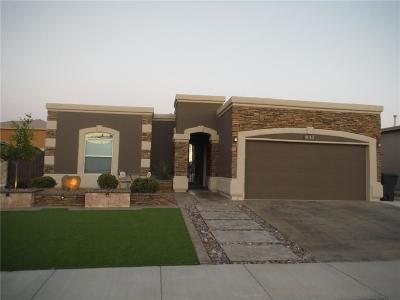 Horizon City Single Family Home For Sale: 837 Desert Silver Drive