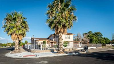 El Paso Single Family Home For Sale: 4924 Winthrop Drive