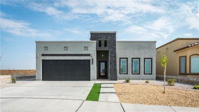 Single Family Home For Sale: 13820 Villa Vista Avenue