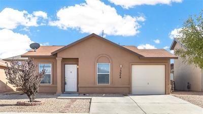 Single Family Home For Sale: 13964 Sandy Rock Drive