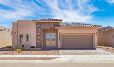 Single Family Home For Sale: 14528 Ginger Kerrick