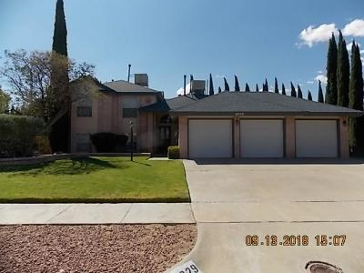 Single Family Home For Sale: 2029 Pueblo Nuevo Circle