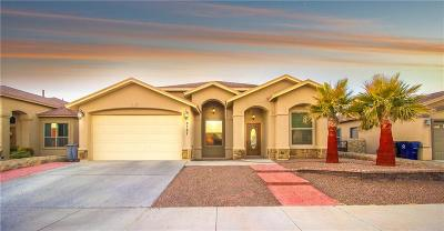 El Paso Single Family Home For Sale: 3121 Tunnel Point
