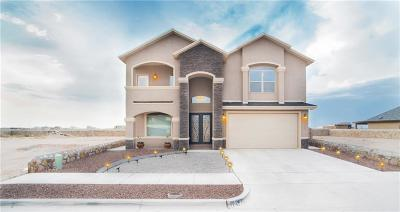 Single Family Home For Sale: 12533 Arrow Weed Drive
