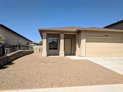 Single Family Home For Sale: 11853 Jim Webb Dr
