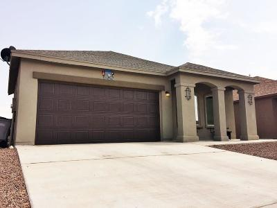 El Paso Single Family Home For Sale: 2116 William Woolverton Place