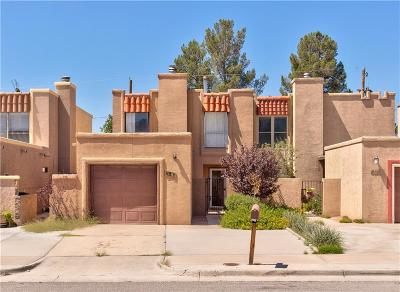 El Paso Single Family Home For Sale: 333 Villa Canto Street