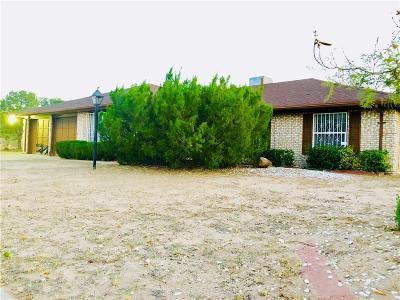 Horizon City Single Family Home For Sale: 16013 Darrington Road