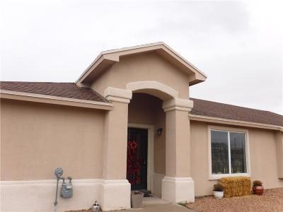 Single Family Home For Sale: 12969 Beto Portugal Lane
