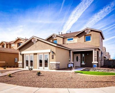 Single Family Home For Sale: 13609 Beobridge Avenue