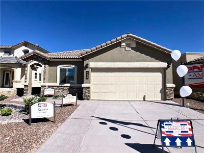 Single Family Home For Sale: 13605 Beobridge Avenue