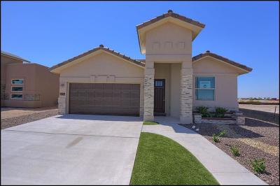 Single Family Home For Sale: 12732 Runway Avenue