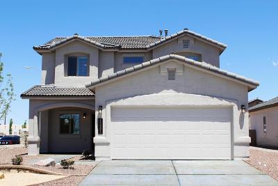 Horizon City Single Family Home For Sale: 13601 Beobridge Avenue