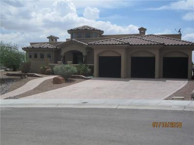El Paso Single Family Home For Sale: 7353 Cibolo Creek Drive