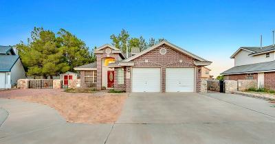 Horizon City Single Family Home For Sale: 444 Cactus Bloom Court