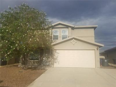 Single Family Home For Sale: 7301 Brick Dust Street