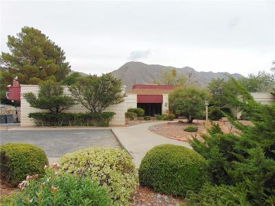 El Paso Single Family Home For Sale: 842 River Oaks Drive