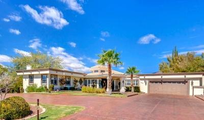 El Paso Single Family Home For Sale: 6101 Pinehurst Drive