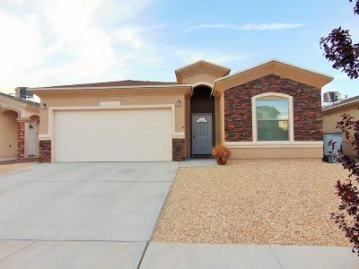 Single Family Home For Sale: 14717 Oldenberg Court Court