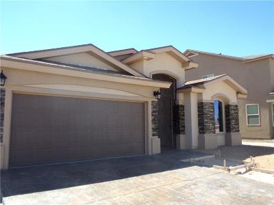 El Paso Single Family Home For Sale: 13120 Red Cove