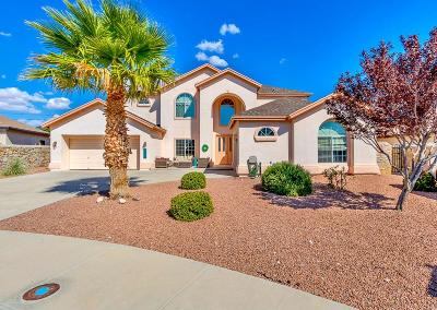 Canutillo Single Family Home For Sale: 7370 Navidad Way