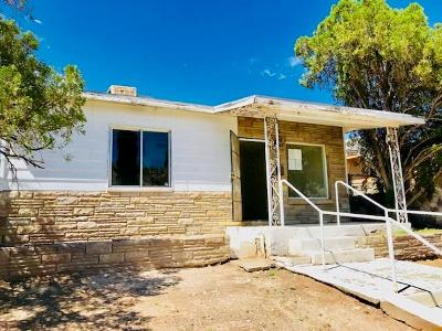 El Paso Single Family Home For Sale: 1213 Wright Street