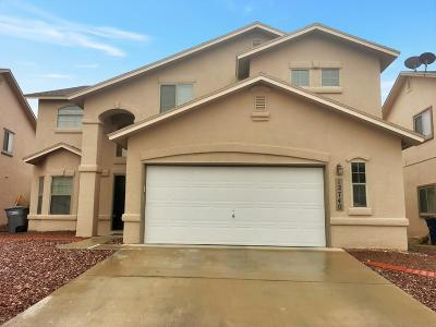 El Paso Single Family Home For Sale: 12740 Tierra Alexis Drive