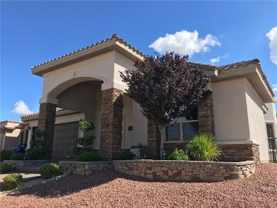 El Paso Single Family Home For Sale: 1408 Franklin Dell