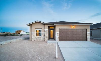 Single Family Home For Sale: 226 Malta Street