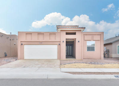El Paso Single Family Home For Sale: 14370 Early Morn Avenue