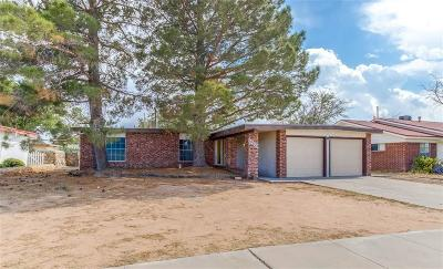 El Paso Single Family Home For Sale: 10828 Brownfield Dr.