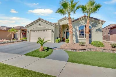Single Family Home For Sale: 3809 Tierra Tania Place