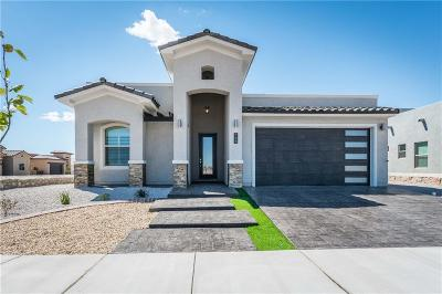 El Paso Single Family Home For Sale: 2194 Enchanted Summit Drive
