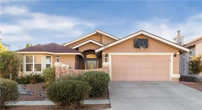 El Paso Single Family Home For Sale: 1417 Black Ridge Drive