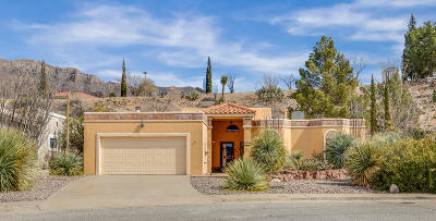Single Family Home For Sale: 822 Via Descanso Drive