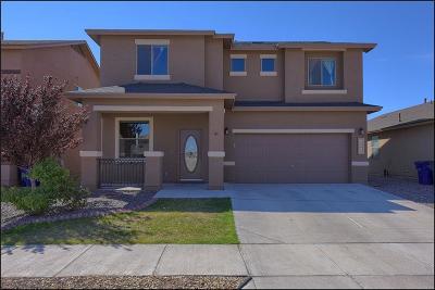 Single Family Home For Sale: 14680 Oldenberg Court
